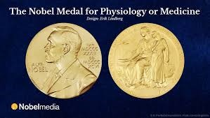 Nobel Medal for Physiology or Medicine